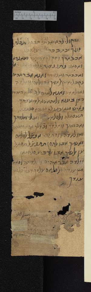 Image of L-G Arabic 2.129 verso